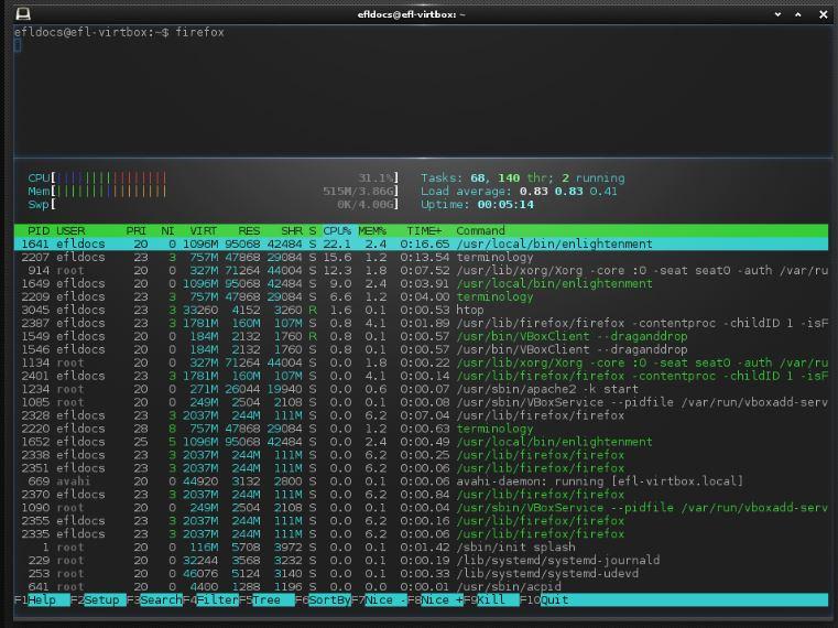 Terminology terminal enlightment install ubuntu