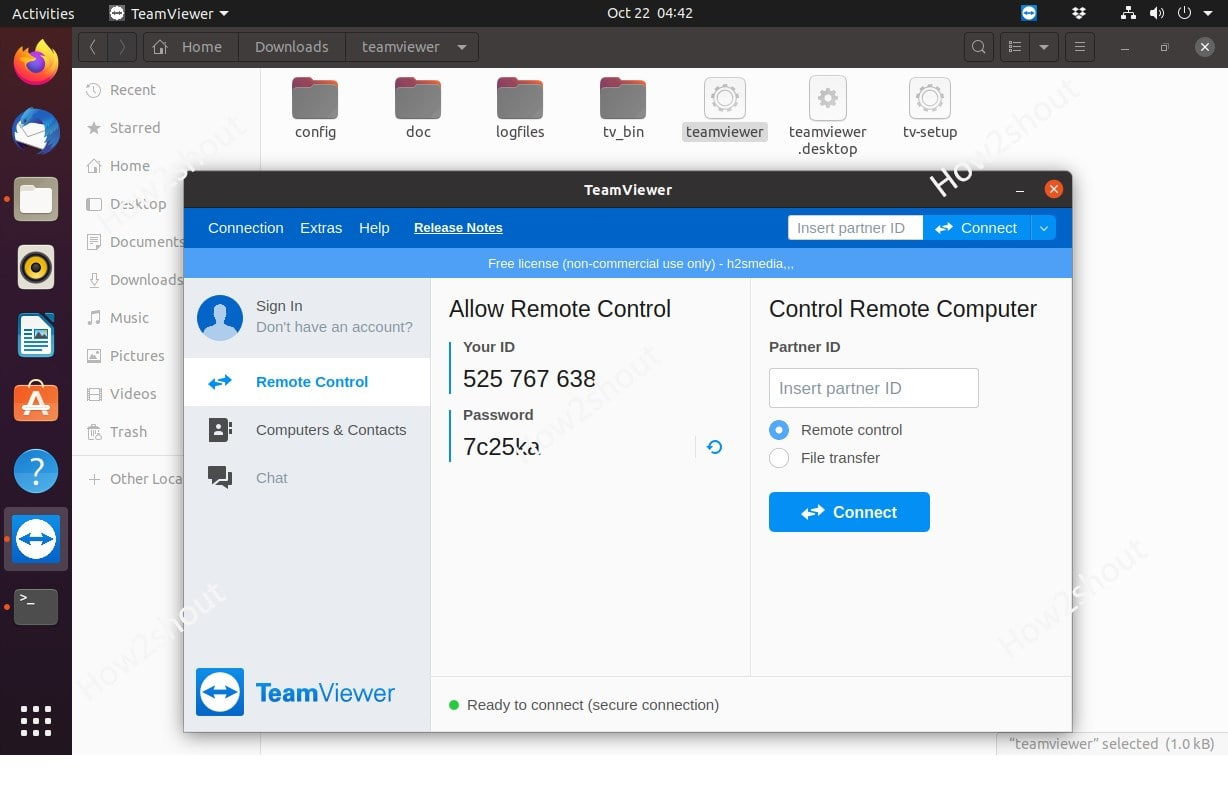 Linxu Teamviewer without installation