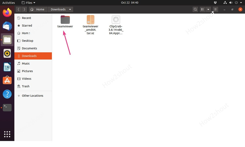 Portable teamviewer Linxu folder