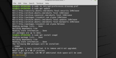 install snap on Linux Mint 20