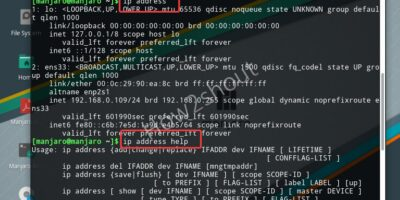 Get Linux ip address using command