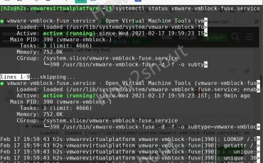 Enable drag drop on Manjaro Linux and VMware Workstation player