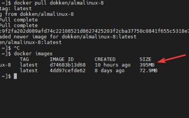 Docker Image of AlmaLinux 8