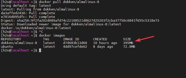 Docker Image of AlmaLinux 8