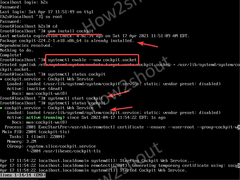 Install and Run cockpit on AlmaLinux 8