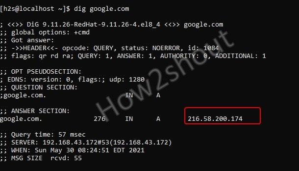Check domain nameservers
