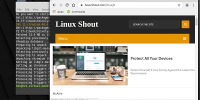 Command to Install Chomium browser on Linux Mint 20.1