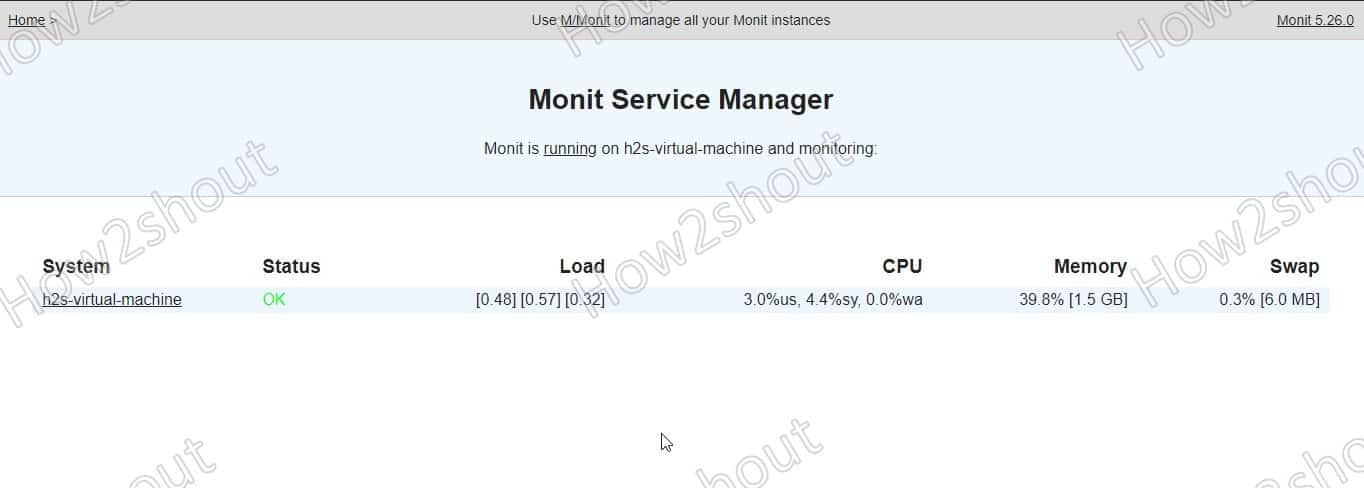 Access Monit Web Interface