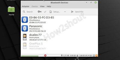 Blueman Install Linux mint and Ubuntu 20.04