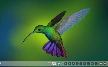 Install Deepin Manjaro Linux
