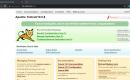 Apache Tomcat installation on Debian 11 Bulleye Linux