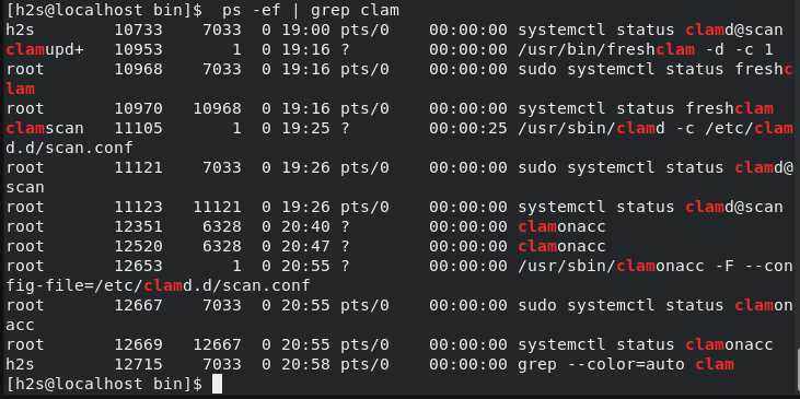 Check All the Clamav running services