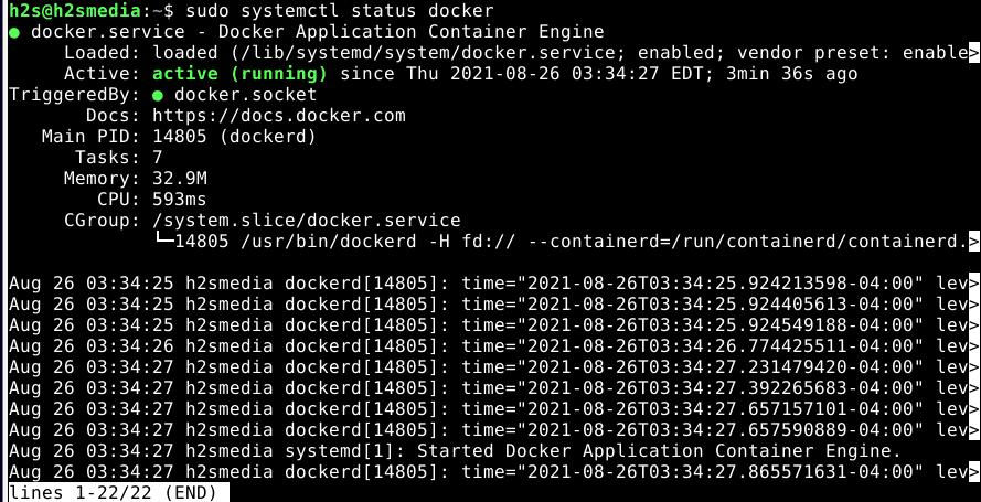 Check Docker service status