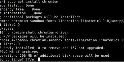 install Chromium Debian 11