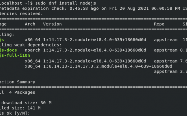 Command to install Nodejs NPM on Rocky Linux or AlmaLinux 8