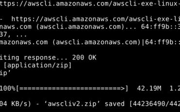 Download AWS CLI installation script on Debian 11