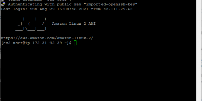 Use putty command terminal to access ec2 AWS instance