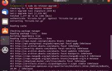 Command terminal Ubuntu 20.04 to 21.04