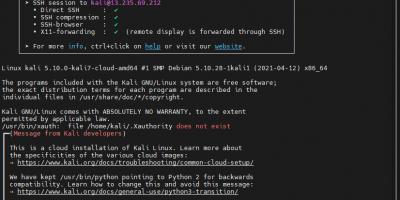 Kali Linux Ec2 Instance connect via SSH