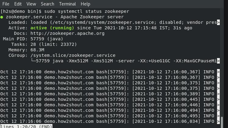 Apache Zookeper Server service start