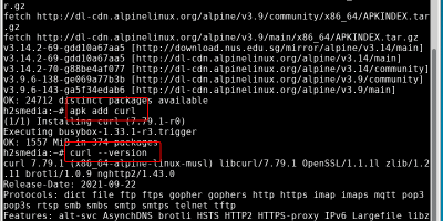Download and install cURL on Alpine Linux