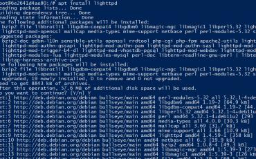 Install lighttpd on Debian 11 bullseye
