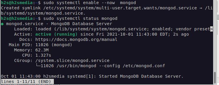 Start MongoDB service on Debian 11