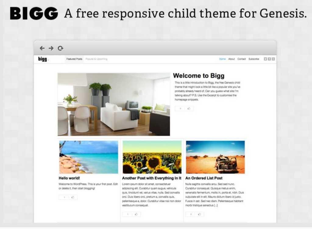 Bigg-theme-genesis