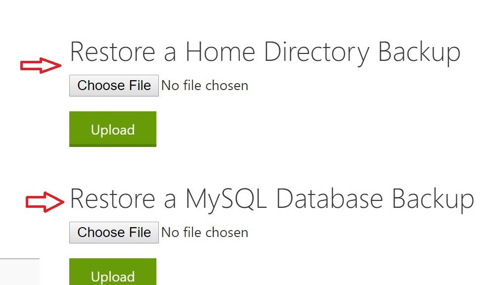 mysql-database-restore WordPress backup
