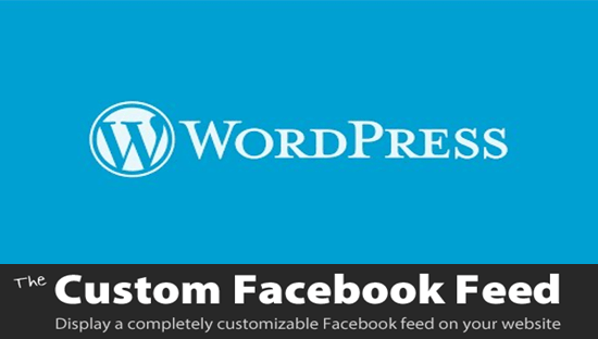 custom facebook feed wordpress