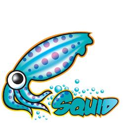 Squid-proxy-logo