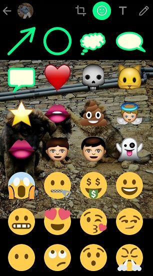 Whatsapp status emoticons