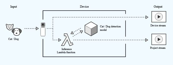 AWS AI camera cat and dog dection models