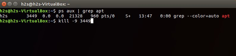 Command To find adn kill Process uses the APT