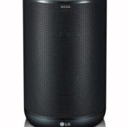 ThinQ Smart Speaker