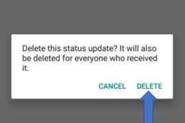 tap on delete optionto delete the whatsapp status for others