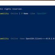 enabling native Windows 10 openssh using powershell