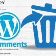 Remove comments box or Leave a Reply section in WordPress
