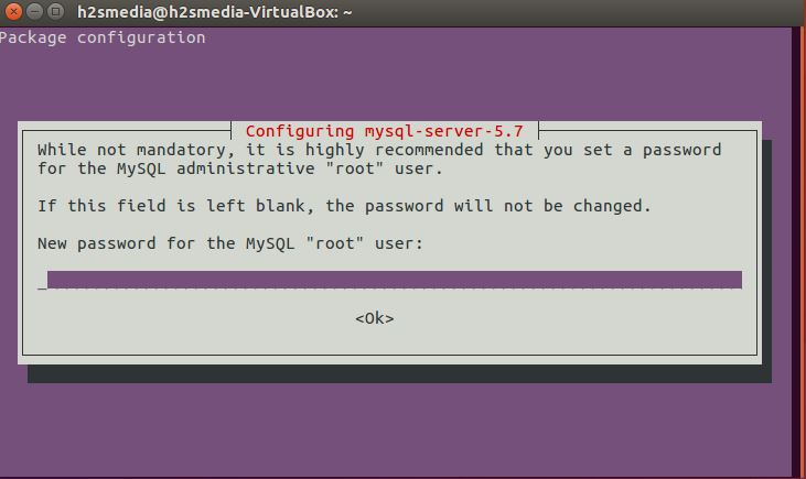 MySQL root password configuration