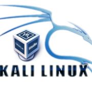 Install Kali Linux on Virtualbox
