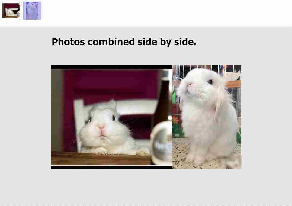 Photos combine side by side