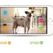 Petzi cam For dogs, cats