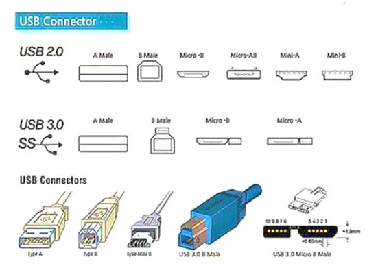 diagram roughly explains the different forms of USB