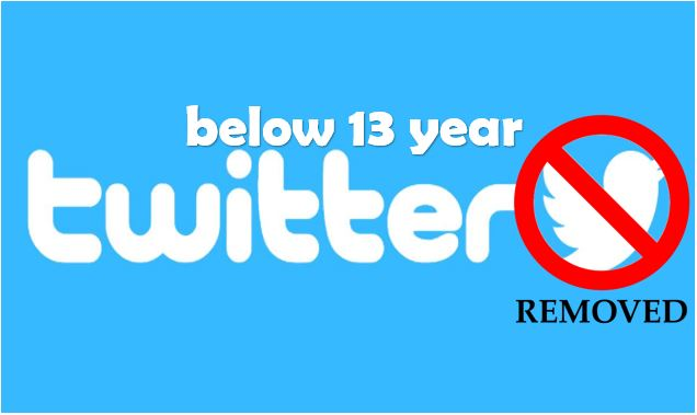 Below 13 year removed and cannot Access Twitter Account