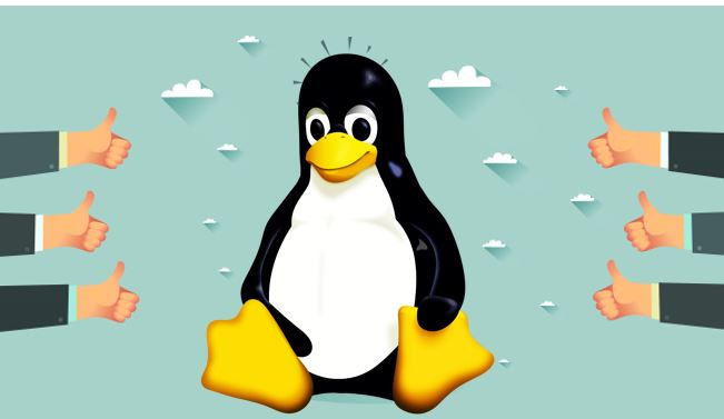 Why Is Linux Operating System So Popular