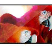 Noble Skiodo Ultra HD NB55SU01 A+