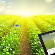 Common terms definitions in smart agriculture