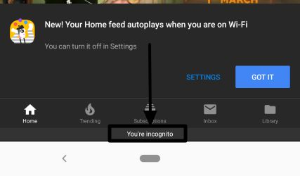 How to go incognito on the YouTube Android app 3