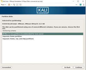 Partition Kali Linux
