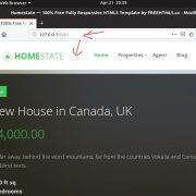 custom web project on Node http server